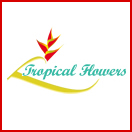 TropicalFlowers